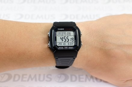 Zegarek Casio W 800H 1AVEF