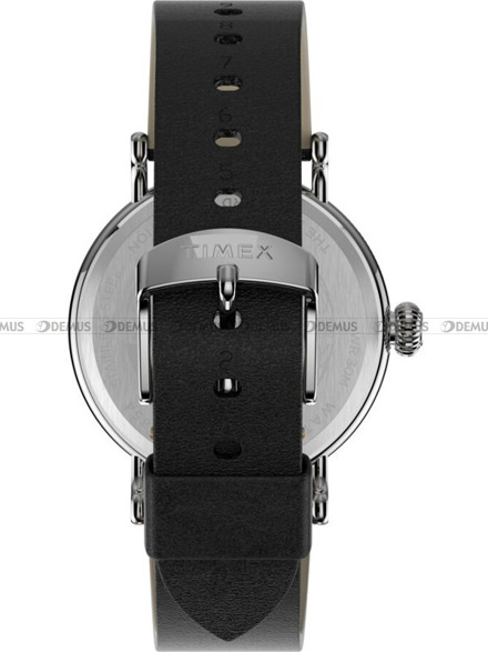 Zegarek Męski Timex Standard TW2T69200